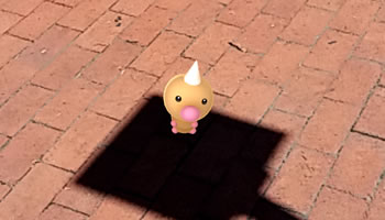 Weedle in Kannapolis